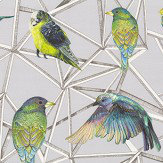 Osborne & Little Aviary Turquoise / Chartreuse / Violet Fabric - Product code: F7011/01