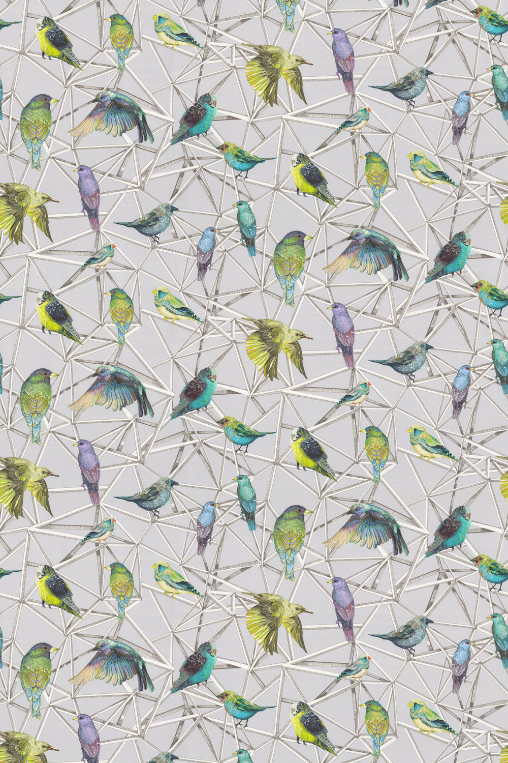 Aviary Fabric - Turquoise / Chartreuse / Violet - by Osborne & Little