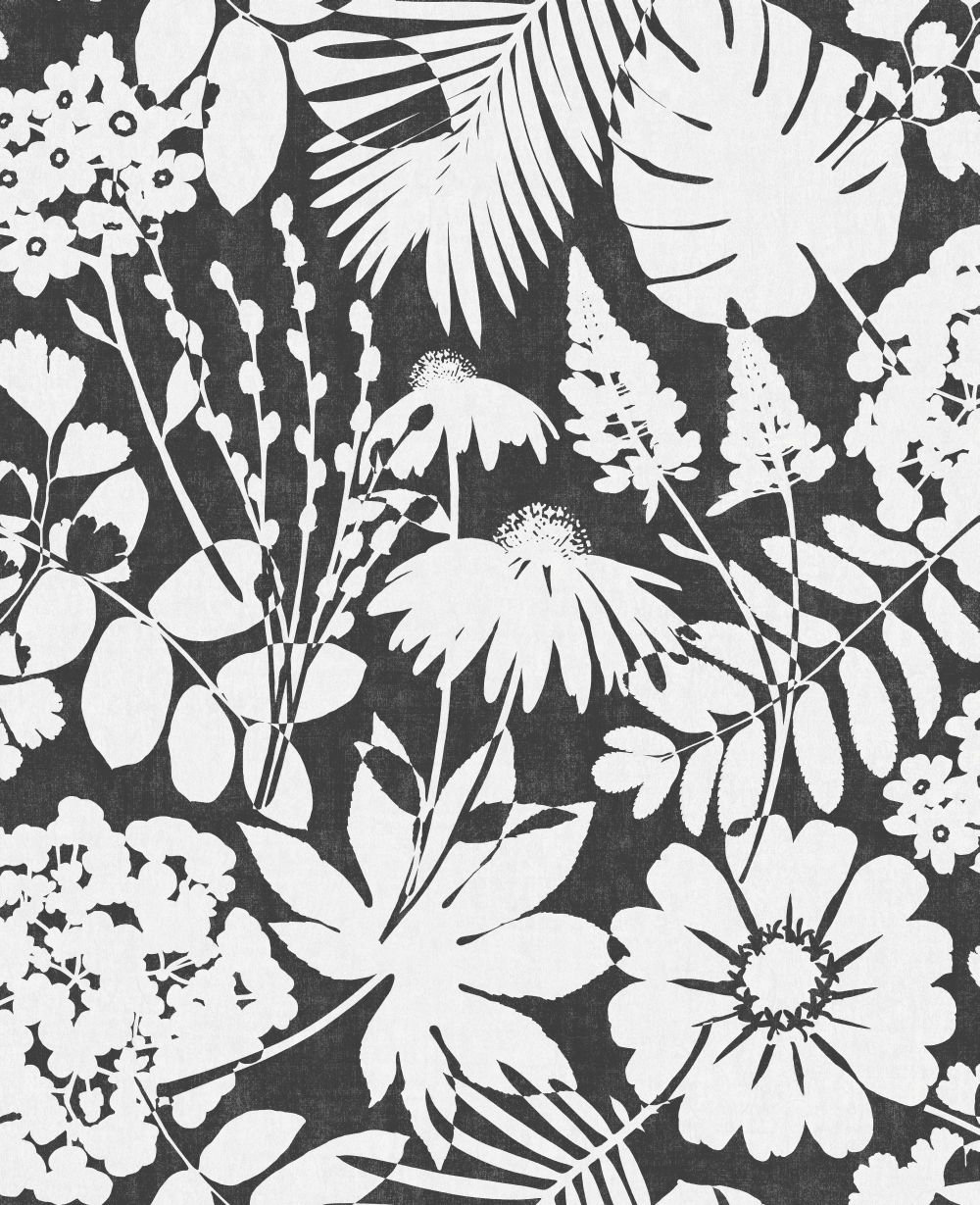 Albany Bold Floral Ebony Wallpaper - Product code: CB42107
