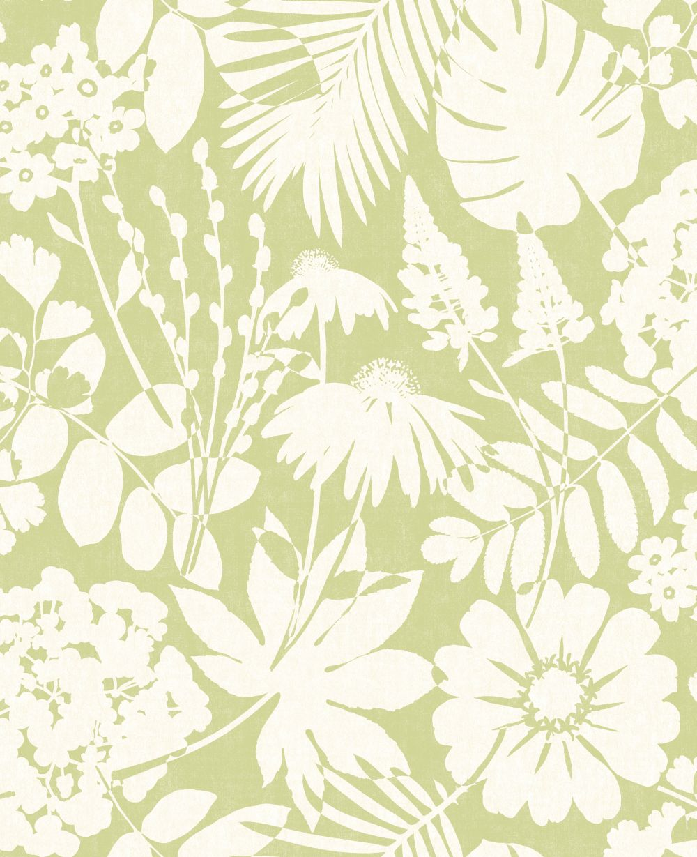 Bold Floral By Albany Green Wallpaper Direct