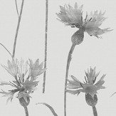 Albany Cornflower Grey Wallpaper