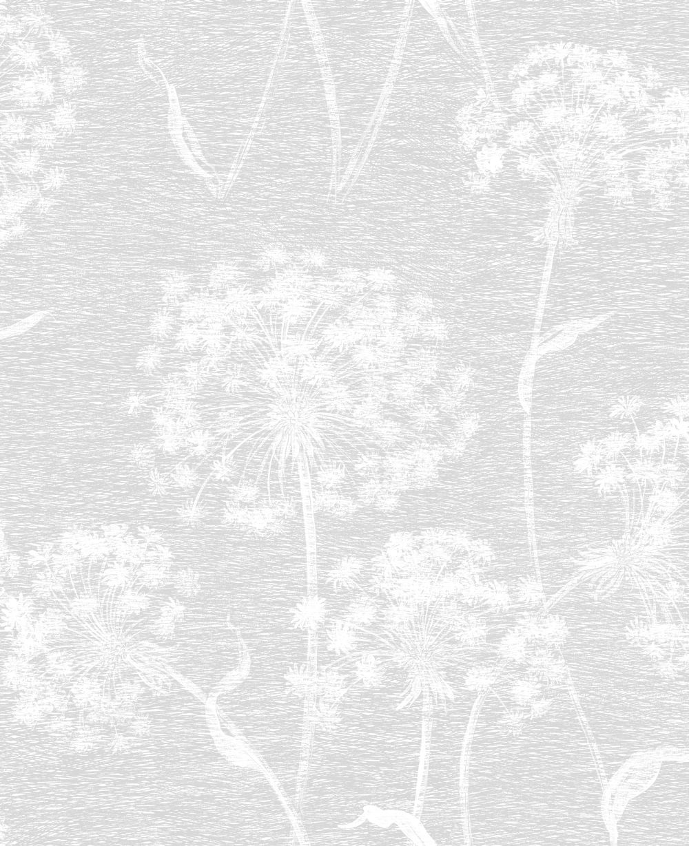 Albany Dandelion Soft Grey Wallpaper main image
