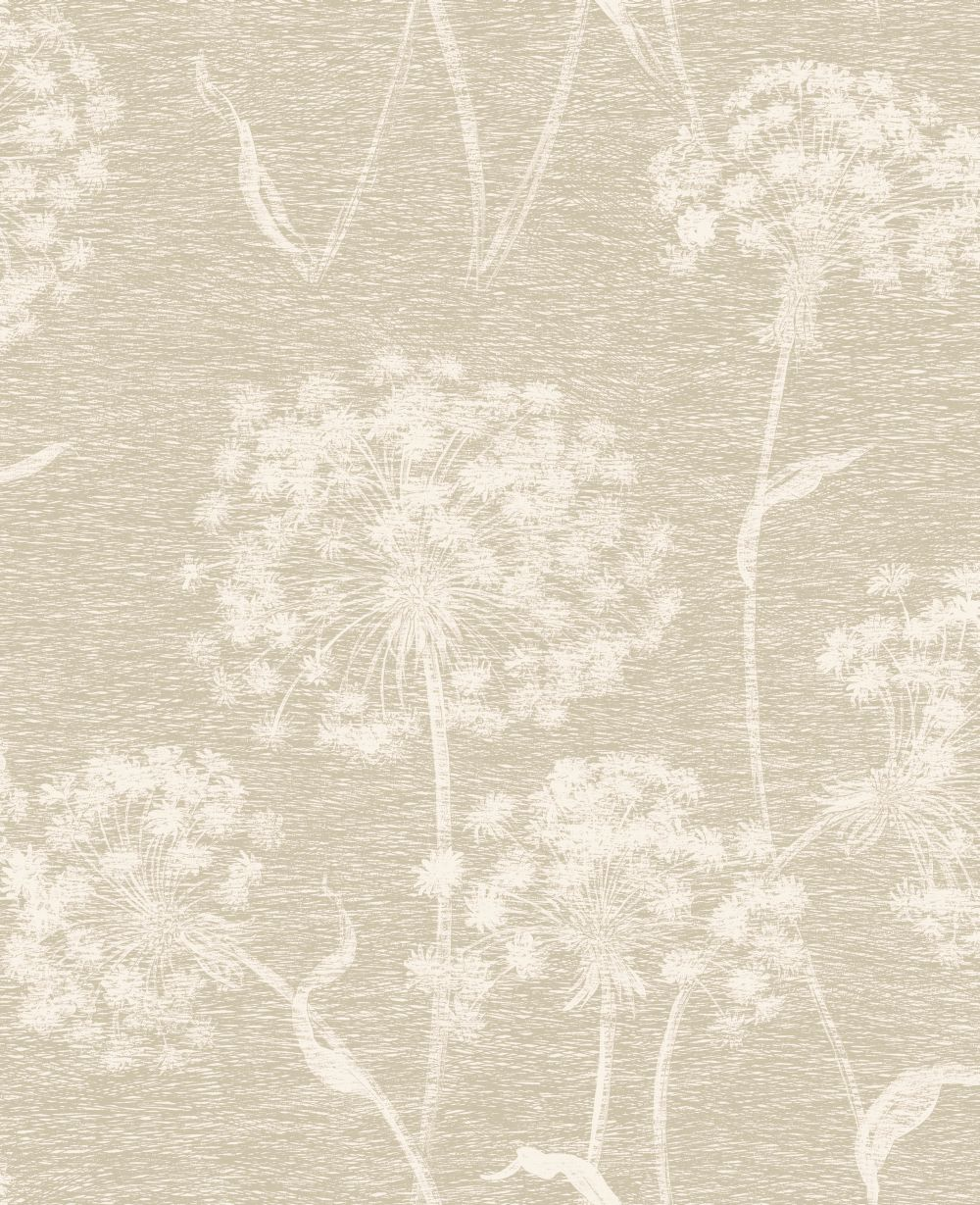 Albany Dandelion Taupe Wallpaper - Product code: CB42128