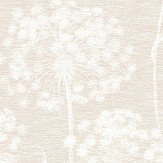Albany Dandelion Cream Wallpaper