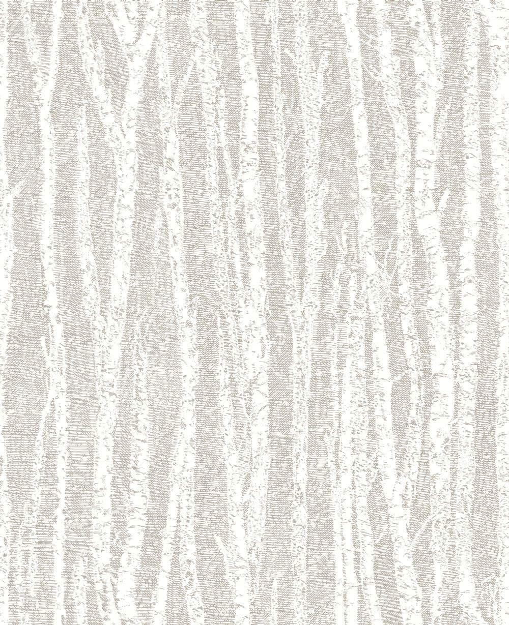 Albany Birch Tree Taupe Wallpaper main image