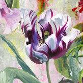Designers Guild Tulipa Stellata Multi Mural