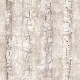 Clarke & Clarke Tree Bark Birch Wallpaper - Product code: W0062/02