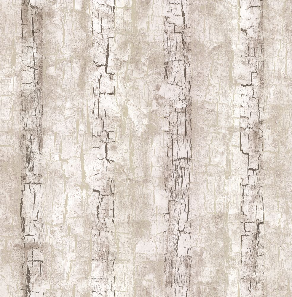tree bark wallpaper impremedianet