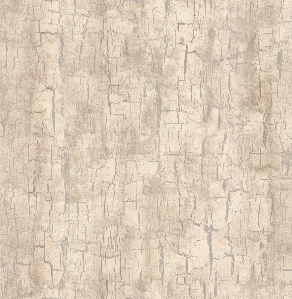 Clarke Tree Bark Parchment Wallpaper Main Image