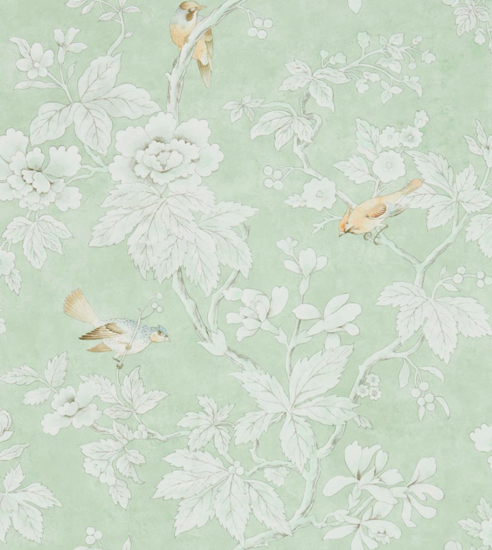 Sanderson Chiswick Grove Sage Wallpaper main image