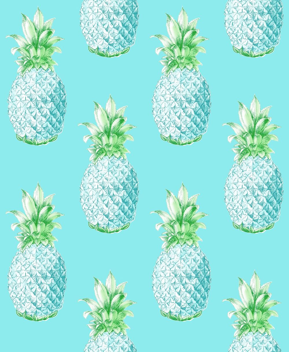 Albany Aloha Aqua Wallpaper - Product code: 24137