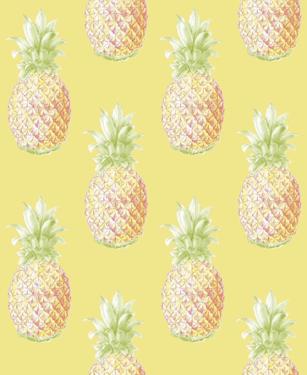 Albany Aloha Sunshine Wallpaper - Product code: 24138