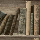 Albany Antique Shelf Sepia / Blue Wallpaper