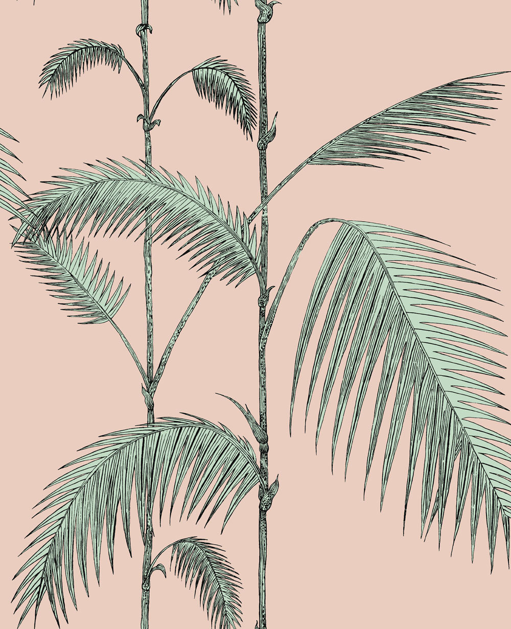 Cole & Son Palm Leaves Alabaster Pink and Mint Wallpaper main image