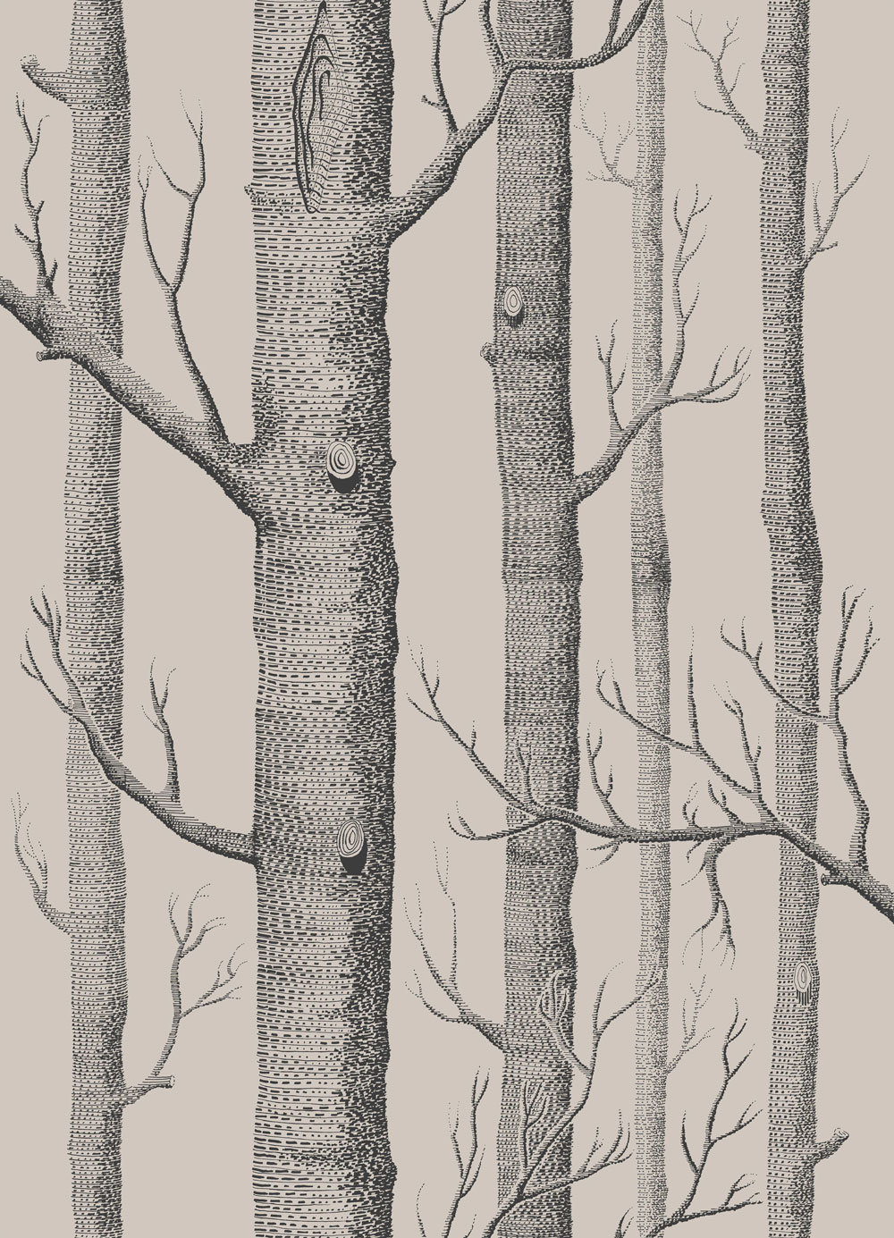 Cole & Son Woods Linen and Charcoal Wallpaper main image