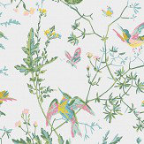 Cole & Son Hummingbirds Green and Pink Wallpaper