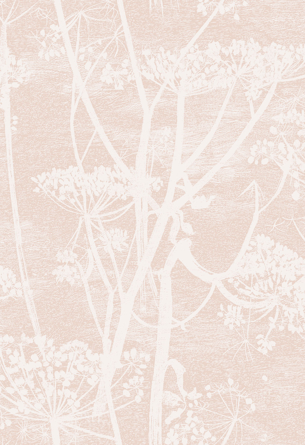 Cole & Son Cow Parsley Ballet Slipper Wallpaper main image