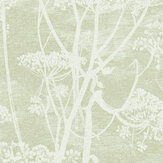 Cole & Son Cow Parsley Olive Green Wallpaper