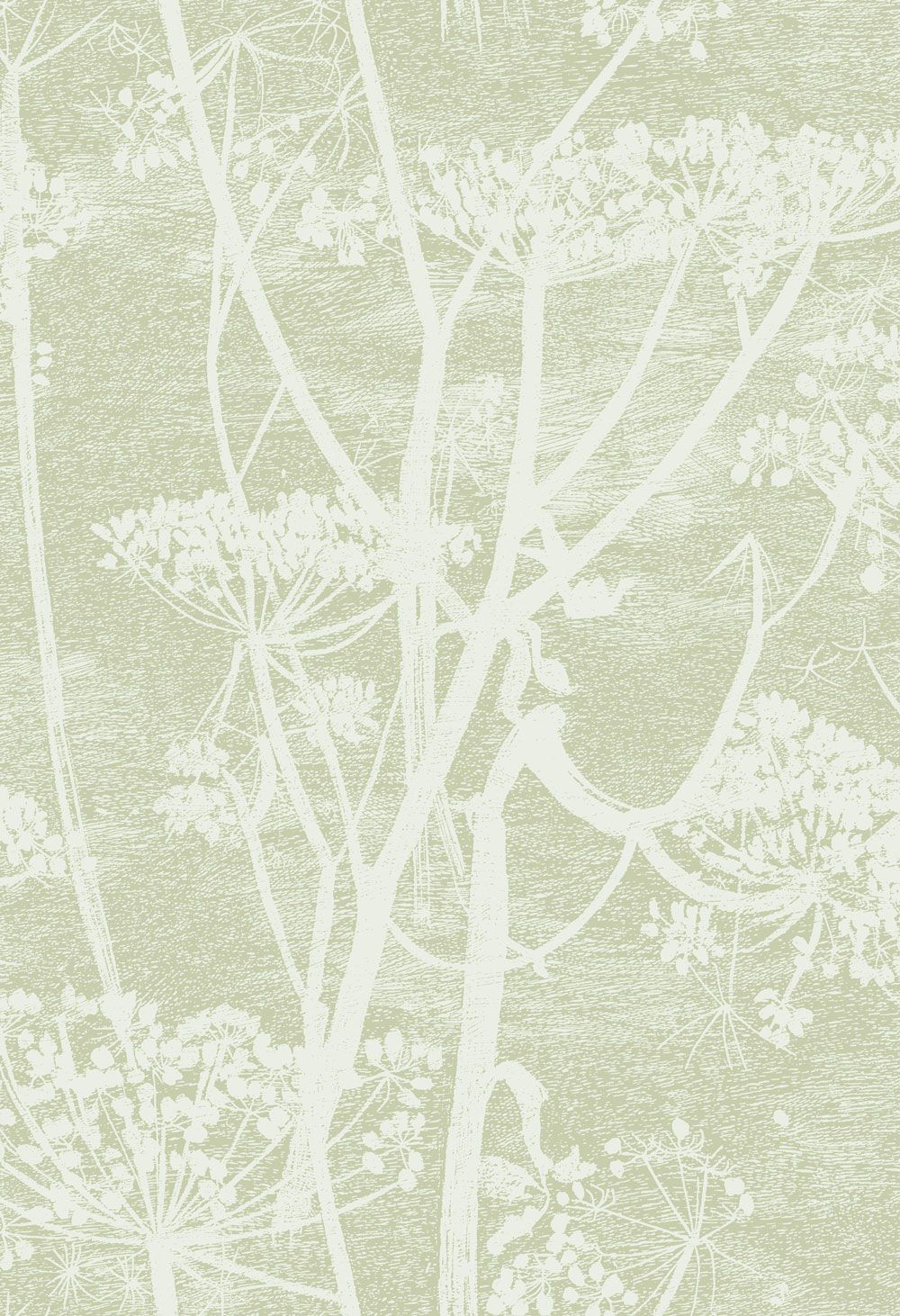Cole Son Cow Parsley Olive Green Wallpaper Main Image