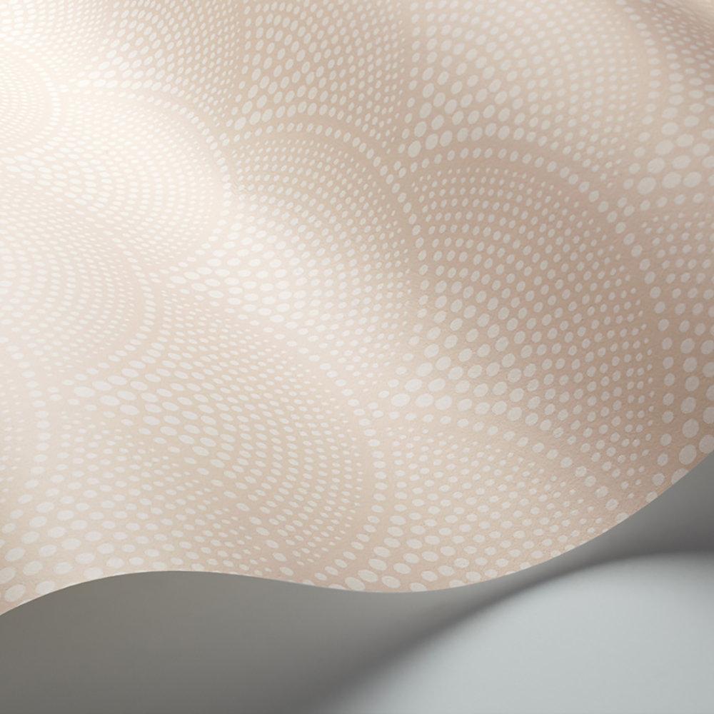 Feather Fan Wallpaper - Ballet Slipper - by Cole & Son