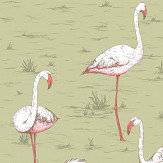 Cole & Son Flamingos Olive Wallpaper