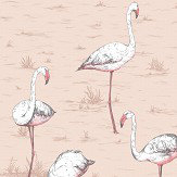 Cole & Son Flamingos Ballet Slipper Wallpaper