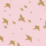 Mini Moderns Star-lings Rose Marais and Gold Wallpaper