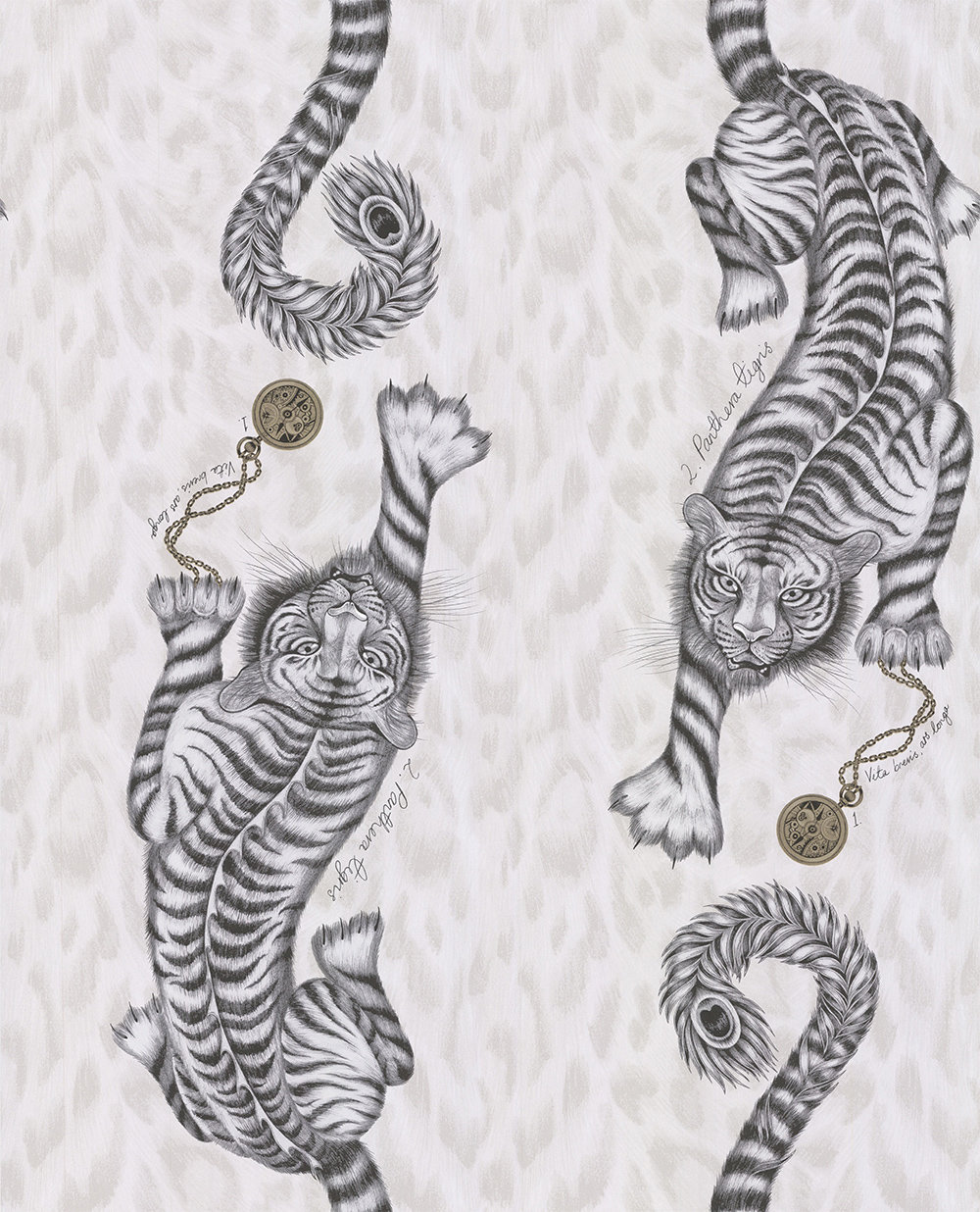 Tigris by Clarke & Clarke - Monochrome - Wallpaper - W0105/02