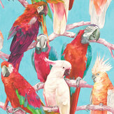 Albany Parrots Multi / Turquoise Wallpaper