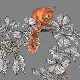 Petronella Hall Conker Fog  Wallpaper - Product code: C-WF