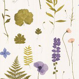 Clarke & Clarke Herbarium Heather Wallpaper