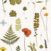 Clarke & Clarke Herbarium Multi / Ivory Wallpaper - Product code: W0091/04