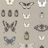 Clarke & Clarke Papilio Charcoal / Gold Wallpaper