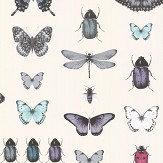 Clarke & Clarke Papilio Teal /Gilver Wallpaper