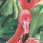 Galerie Flamingo Pink / Green / Black Wallpaper - Product code: G56405