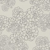 Paint & Paper Library Aeonium Cotton / Grey Wallpaper