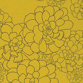 Paint & Paper Library Aeonium Yellow Wallpaper