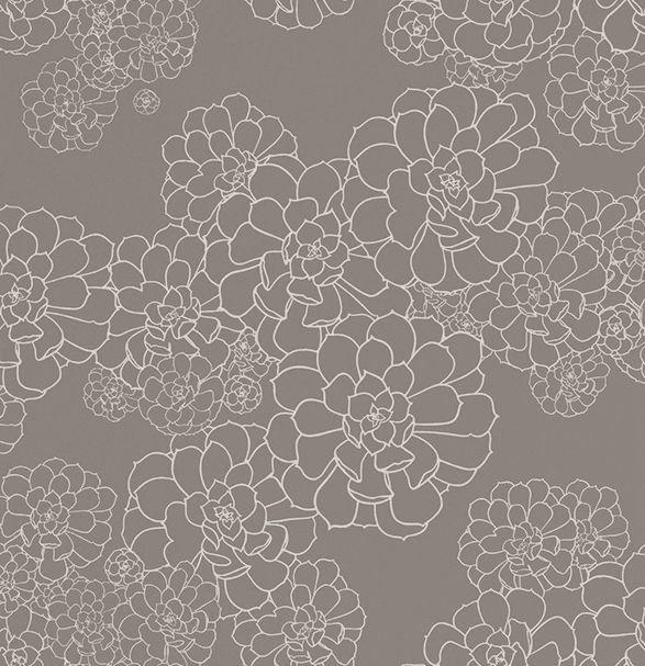 Paint & Paper Library Aeonium Monument Wallpaper - Product code: 0393AEMONUM