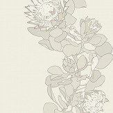 Paint & Paper Library Protea Trail Slate Wallpaper