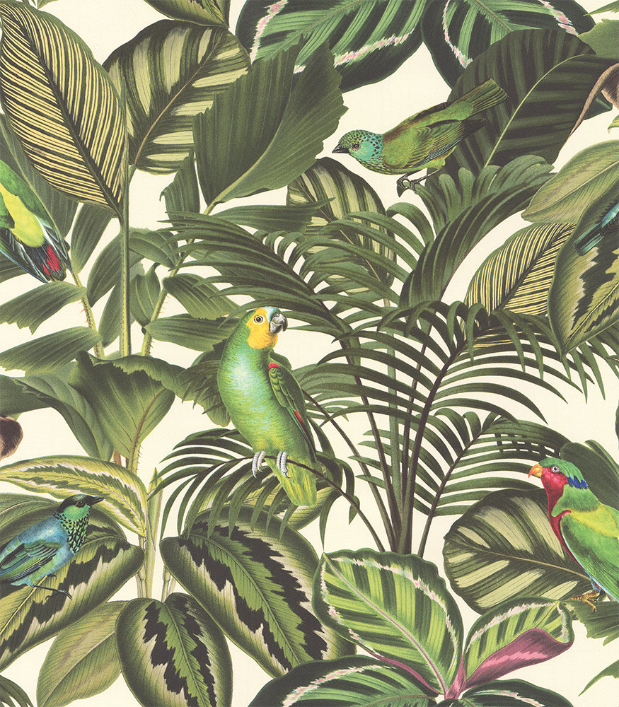 Parrot Jungle By Albany Green Wallpaper Direct