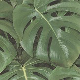 Albany Rainforest Green Wallpaper - Product code: 441802