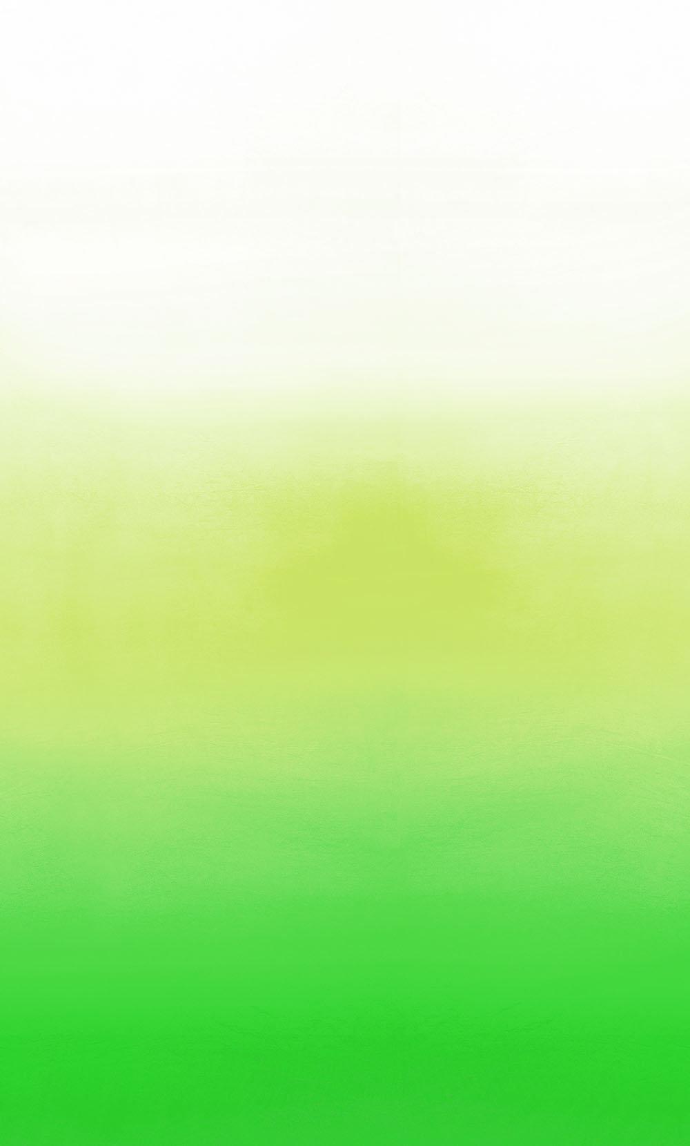 Savoie Mural - Lemongrass - by Designers Guild