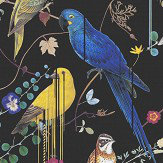 Christian Lacroix Birds Sinfonia Black Wallpaper - Product code: PCL7017/01