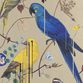 Christian Lacroix Birds Sinfonia Metallic Gold Wallpaper - Product code: PCL7017/04