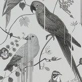 Christian Lacroix Birds Sinfonia Graphite Wallpaper - Product code: PCL7017/08