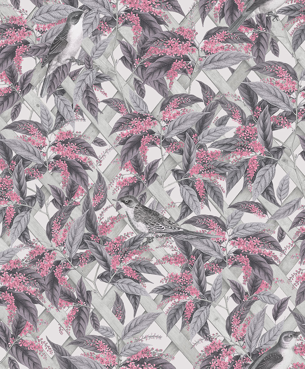 Albany Brassica Pink and Grey Wallpaper main image
