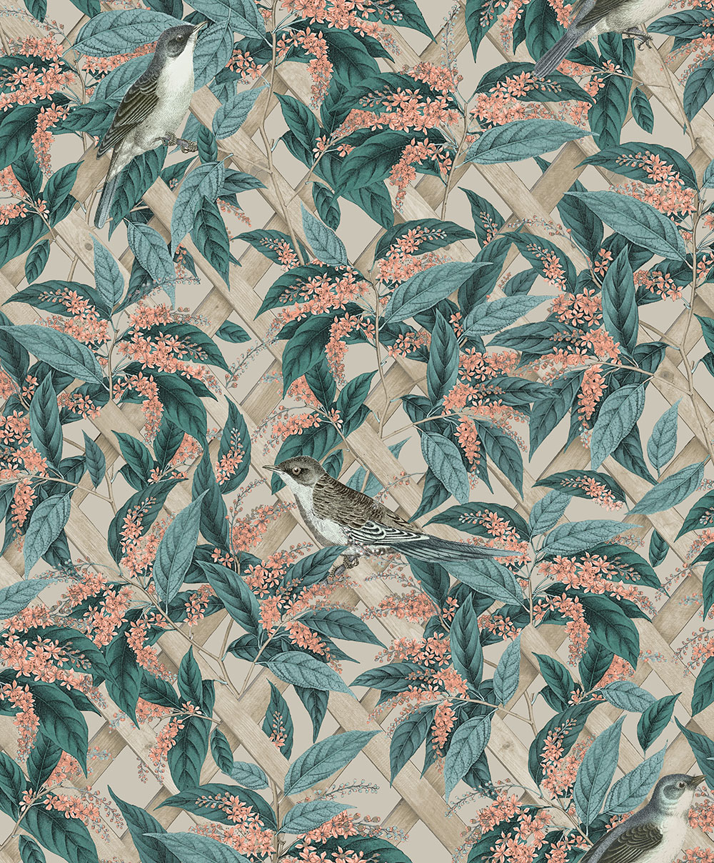 Albany Brassica Apricot Wallpaper - Product code: 90333