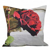 Brewers Home Rose Cushion