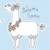Albany Llama-Rama Sky Wallpaper