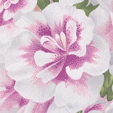 Designers Guild Variegated Azalea Violet Wallpaper